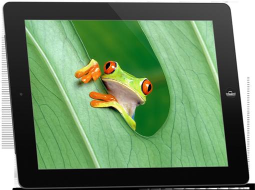 iPad à Vincennes
